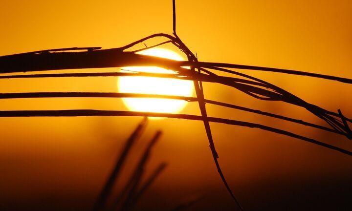 Ανεβαίνουν οι θερμοκρασίες - Οδηγίες προστασίας από τον καύσωνα