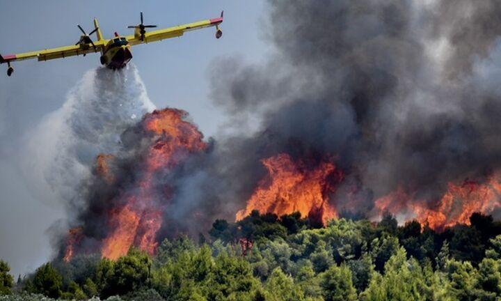 Σαράντα πέντε δασικές πυρκαγιές  σε όλη την Ελλάδα το 24ωρο