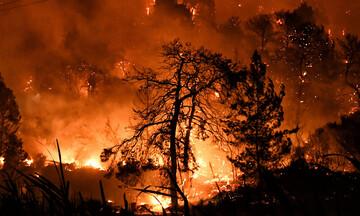 ΓΓΠΠ - Προσοχή: Σε ποιες περιοχές υπάρχει υψηλός κίνδυνος πυρκαγιάς και την Πέμπτη