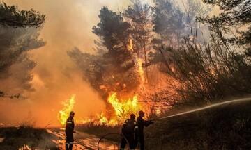 Πυρκαγιά στηνΑχαΐα: Μεταφέρθηκαν με ασφάλεια οι κάτοικοι της Δροσιάς