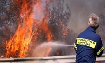 Νέα φωτιά στην Αχαΐα - Εκκενώνεται ο οικισμός Σούλι