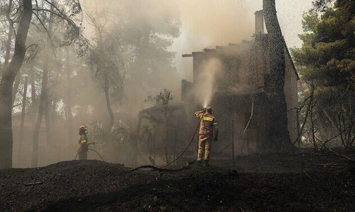 Πυρκαγιά στη Σταμάτα: Δίωξη για δύο πλημμελήματα στον μελισσοκόμο