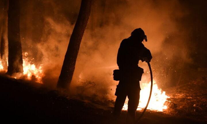 Πυρκαγιές: Άμεση καταβολή των μέτρων στήριξης μέσω προκαταβολών - Πώς θα γίνουν οι αιτήσεις