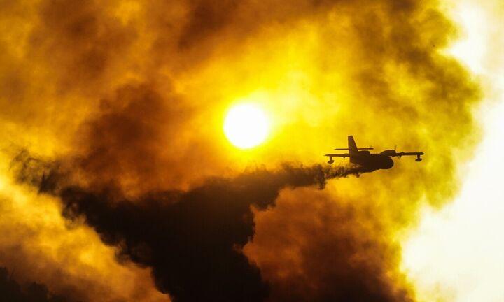 Αναζωπυρώσεις στην Ηλεία: Διάφορες εστίες φωτιάς