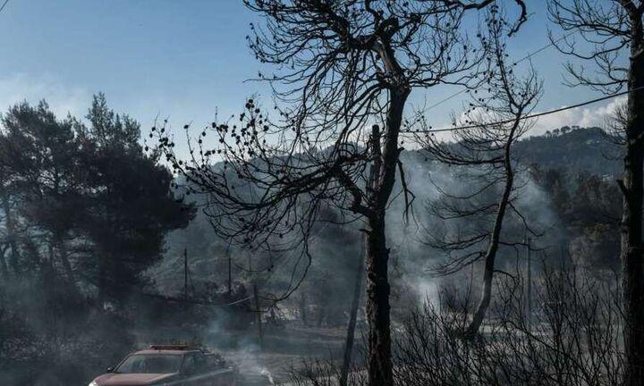 Διευθυντής Αστεροσκοπείου: 75.000 στρέμματα καμένης γης σε Αττική, πάνω από 200.000 σε Εύβοια