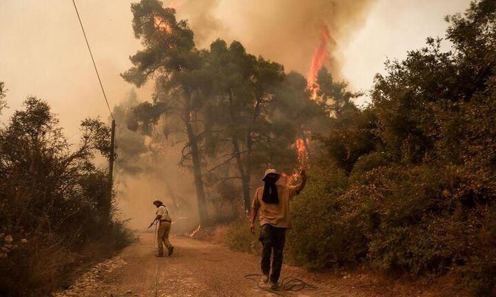 Εύβοια: Πλησιάζει την Ιστιαία η φωτιά- Απειλούνται Γαλατσώνα, Αβγαριά, Ασμίνι