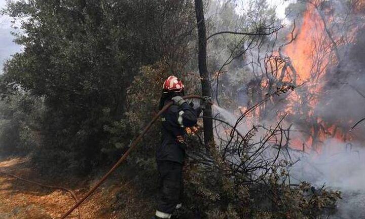 Αναζωπυρώσεις και ενεργές εστίες φωτιάς σε Γορτυνία και περιοχές του δήμου Αρχαίας Ολυμπίας