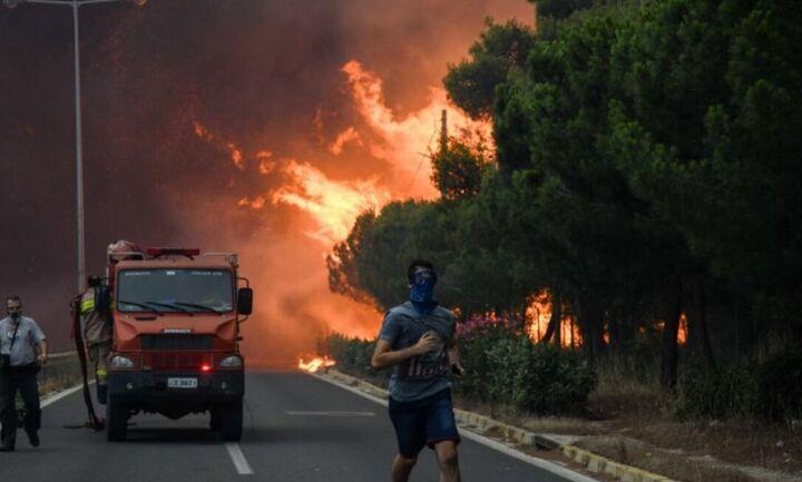 Σκρέκας: Aναδασωτέες μέσα σε 30 ημέρες οι περιοχές που κάηκαν