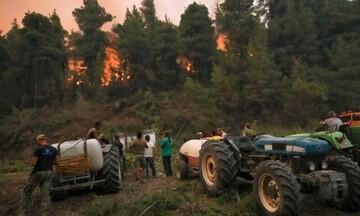 Μέτρα για την στήριξη πυρόπληκτων αγροτών και παραγωγών