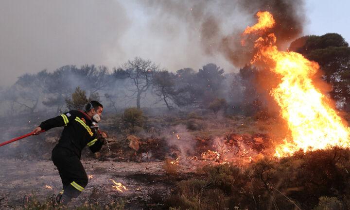Γεωργιάδης: Οι ευθύνες θα καταλογιστούν όταν λήξουν οι πυρκαγιές