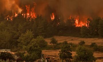 Πολύ υψηλός κίνδυνος πυρκαγιάς αύριο σε Αττική, Εύβοια, Λακωνία και Βόρειο Αιγαίο