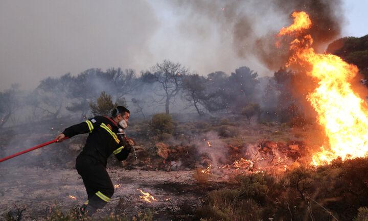 Meteo: Αύξηση 26% των πυρκαγιών και 450% της καμένης έκτασης στην Ελλάδα, φέτος