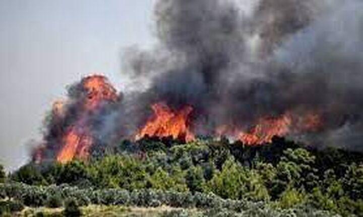 Σοκαριστικά στοιχεία από τον ΟΗΕ: Η άνοδος της θερμοκρασίας στον πλανήτη επιταχύνεται