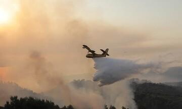 Πυρκαγιά στην Κερατέα: Μεγάλη φωτιά σε εξέλιξη - Μήνυμα εκκένωσης από το 112 για τέσσερις οικισμούς