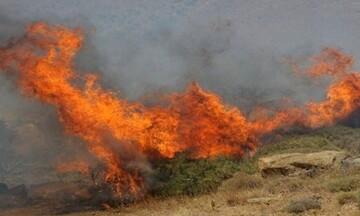 Πυρκαγιά σε χαμηλή βλάστηση στην Αίγινα
