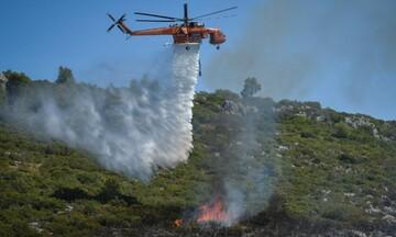Έκτακτο - Πυρκαγιά στα Βίλια: Μήνυμα από το 112 για νέες εκκενώσεις χωριών