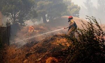 Πυρκαγιά στα Βίλια - Δήμαρχος Μάνδρας: 30 χρόνια δεν μας επιτρέπουν να φτιάξουμε αντιπυρικές ζώνες