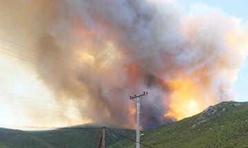 Σκληρή μάχη με τι φλόγες στα Βίλια - Εκκενώσεις οικισμών - Καλύτερη η εικόνα στην Κερατέα