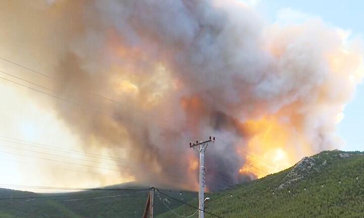 Πυρκαγιά στα Βίλια: Έως την Κρήτη έφτασε ο καπνός - Πως θα εξελιχθούν οι ανέμοι