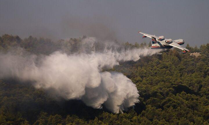 Πυρκαγιά στα Βίλια: Βελτιωμένη εικόνα από το πύρινο μέτωπο - Αναζωπυρώσεις στο Λαύριο