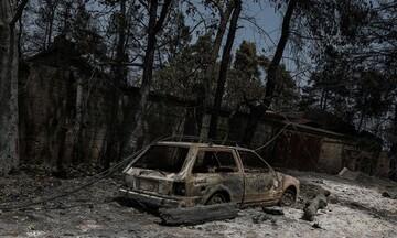arogi.gov.gr: Διευκρινήσεις για τη συμπλήρωση της δήλωσης για την αποζημίωση των πυρόπληκτών