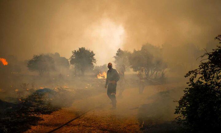 Πυρκαγιά στα Βίλια: Μάχη με τον πύρινο εφιάλτη - Εκκενώθηκαν πέντε οικισμοί