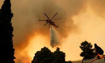 Πυρκαγιά στα Βίλια: Μάχη με τις φλόγες κοντά στους οικισμούς Οινόη και Πανόραμα