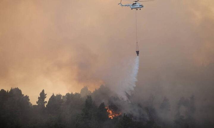 Νότια Εύβοια: Πυρκαγιά ξέσπασε πριν λίγο στο Θύμι Καρύστου