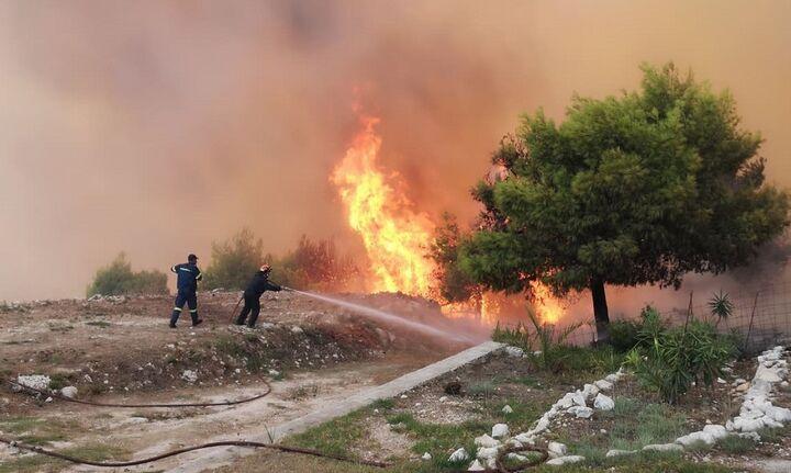 Ζάκυνθος: Ποινή τεσσάρων ετών φυλάκισης χωρίς αναστολή και δικαίωμα έφεσης σε εμπρηστή