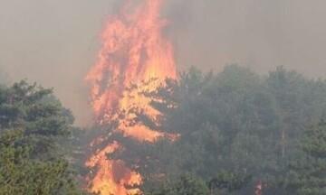 Βίλια: Ανεξέλεγκτη για τέταρτη μέρα η πυρκαγιά - Νότια προς το Πεδίο Βολής Μεγάρων το μέτωπο