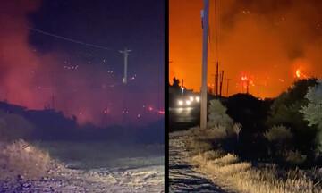 Πυρκαγιά στην Κερατέα: Πέταξαν φωτοβολίδες στο δάσος και ξέσπασε φωτιά (vid)