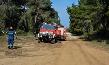 ΓΓΠΠ: Νέα προειδοποίηση για υψηλό κίνδυνο πυρκαγιών το Σάββατο
