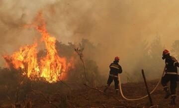 Εύβοια: Οριοθετήθηκε η πυρκαγιά που ξέσπασε στην Κάρυστο
