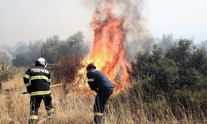 Σε ύφεση η πυρκαγιά στα Βίλια - Συνεχίζονται οι επιχειρήσεις κατάσβεσης