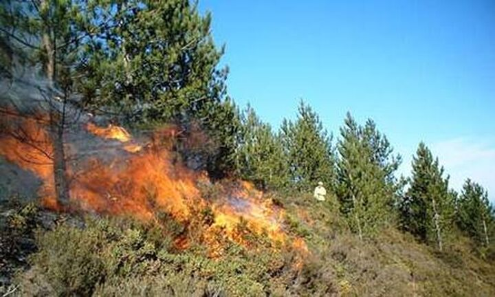 Πολύ υψηλός κίνδυνος πυρκαγιάς, αύριο, σε 7 περιφέρειες