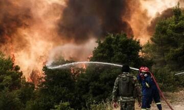 Σε ύφεση η πυρκαγιά στο Δίστομο Βοιωτίας