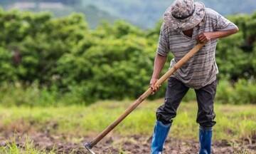 ΟΠΕΚΕΠΕ: Σήμερα οι πιστώσεις στους λογαριασμούς των αγροτών που επλήγησαν από την πανδημία