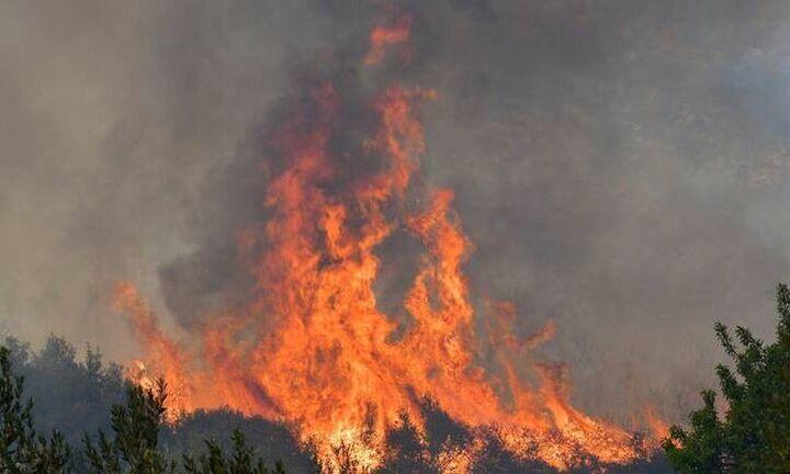 Πυρκαγιά στην Ανάβυσσο στην περιοχή Άγιος Νικόλαος