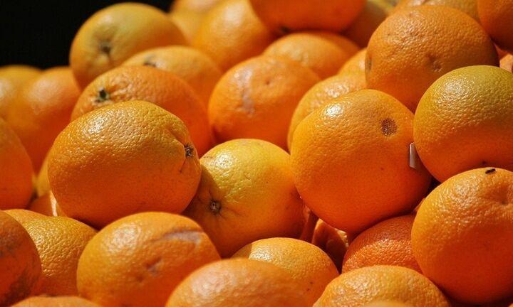 ΕΛΓΟ-ΔΗΜΗΤΡΑ: Αφαίρεση βιολογικού σήματος από γεωργική επιχείρηση παραγωγής πορτοκαλιών