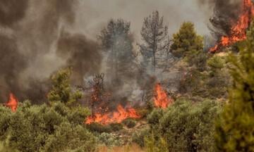 Πυρκαγιά τώρα στην Πάρνηθα