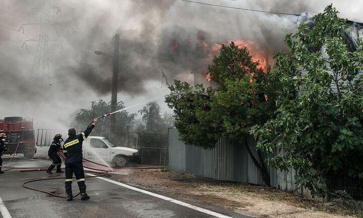 Πιστώσεις 3,94 εκατ. ευρώ σε 717 πληγέντες από τις πυρκαγιές