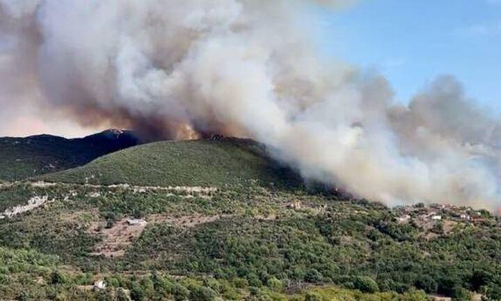 Πυρκαγιά σε δασική έκταση στα Καλύβια Μεγαλόπολης