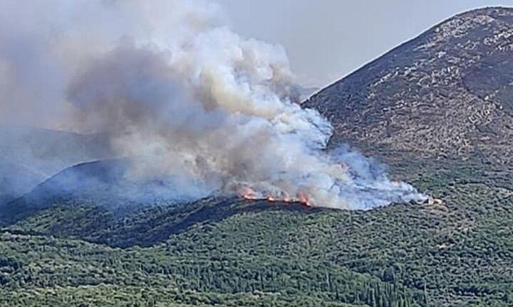 Πυρκαγιά στα Αβραμιάνικα της Ανατολικής Μάνης