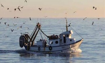 ΕΛΣΤΑΤ: Μείωσημηχανοκίνητων αλιευτικών σκαφών και αλιευμάτων