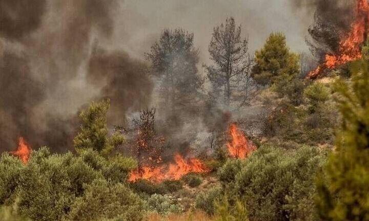 Σε εξέλιξη πυρκαγιά στην περιοχή Πλακάλωνα στα Χανιά