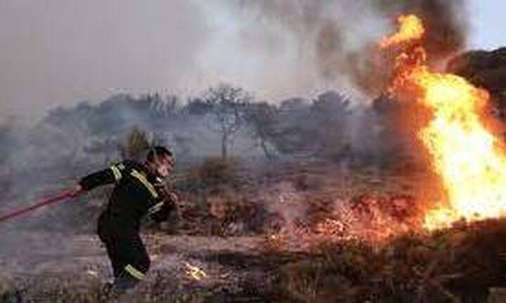 Πυρκαγιές Αυγούστου: Στα 38,5 εκατ. ευρώ η πρόβλεψη των αποζημιώσεων της ασφαλιστικής αγοράς