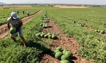 Δημοσιεύθηκε στο ΦΕΚ η απόφαση για τους «Νέους Αγρότες»