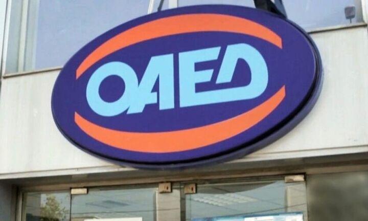 ΟΑΕΔ: Σε λειτουργία η πλατφόρμα prosvasis.oaed.gr για τα ΑμεΑ