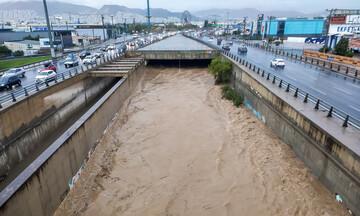 Μπάλλος - Λέκκας: 30 εκατ. τόνοι νερού έπεσαν χθες στον Κηφισό – Να ξεχάσουμε ό,τι ξέραμε
