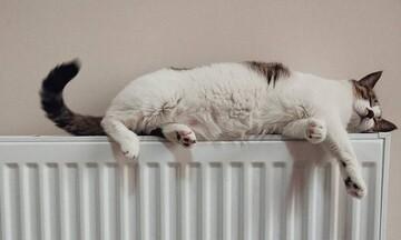 ΑΠΟΚΛΕΙΣΤΙΚΟ: Υπολογίστε μόνοι σας το κόστος της θέρμανσης με πετρέλαιο, ρεύμα ή φυσικό αέριο
